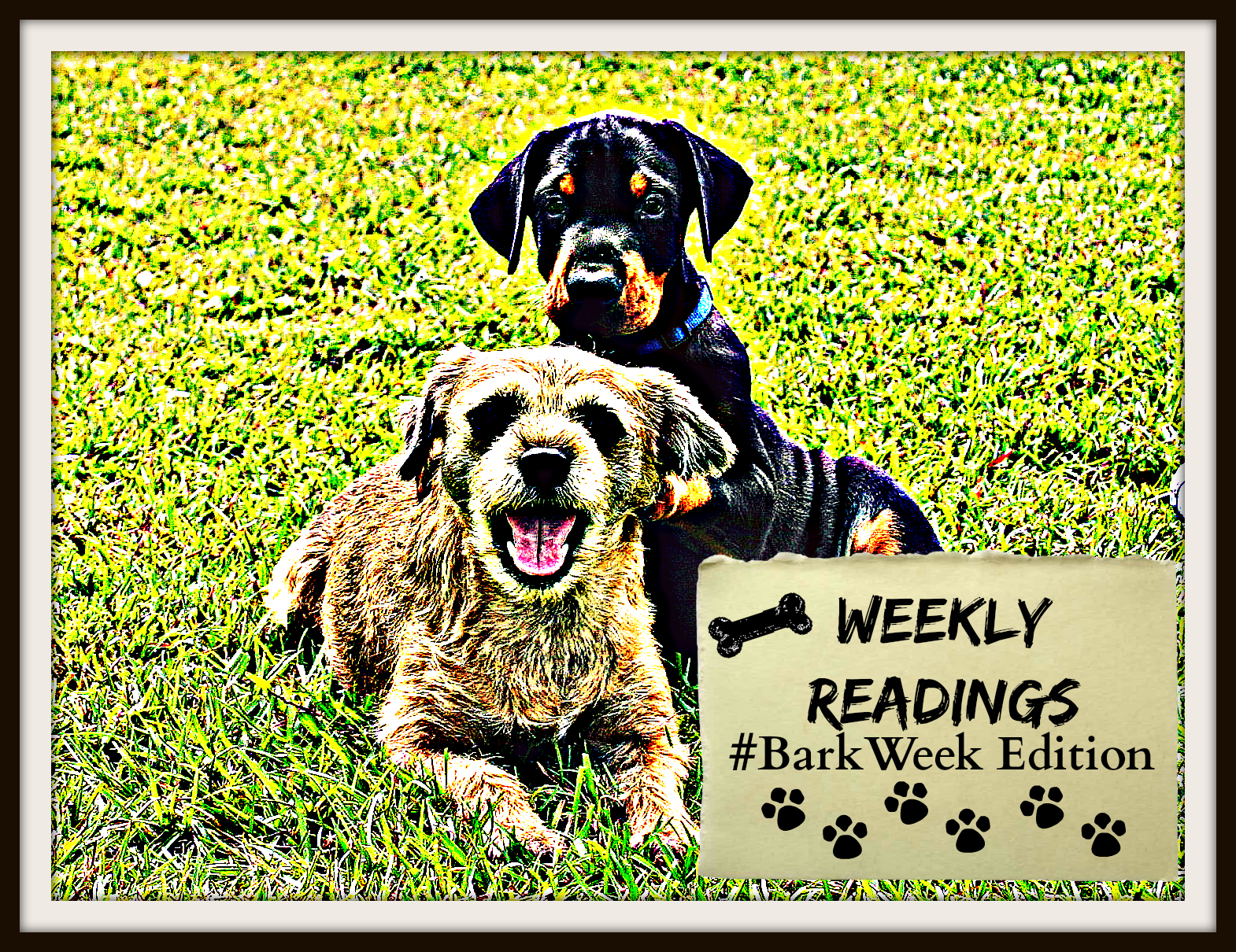 WEEKLY READINGS (#BarkWeek) - FINAL V2
