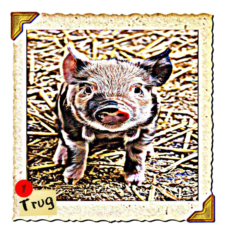 TRUG-2.5