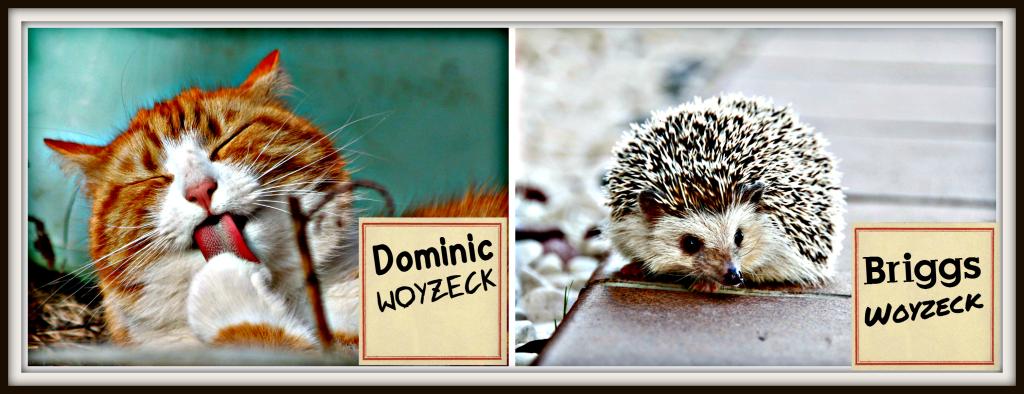 Dominic Woyzeck and Briggs Woyzeck II